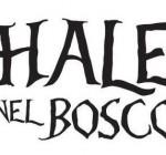 Chalet nel Bosco Venerdi